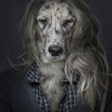 20121018_dogster_sebastian_magnani_4_1351983943