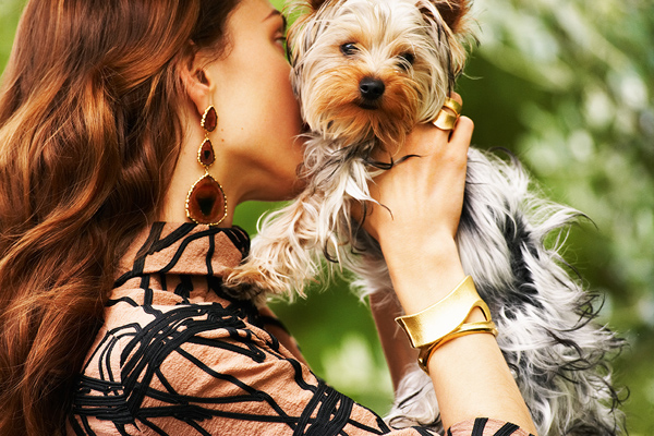 bracelet_dog_earring_ring_woman_favim_com_146447_2_1348751920
