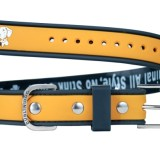 collar_dublin_simply_solid_hunter_orange_5_1337939445