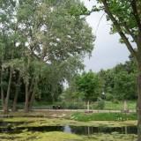 berlin_tiergarten_park_3_1335378395