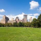 new_york_central_park_7_1335386068